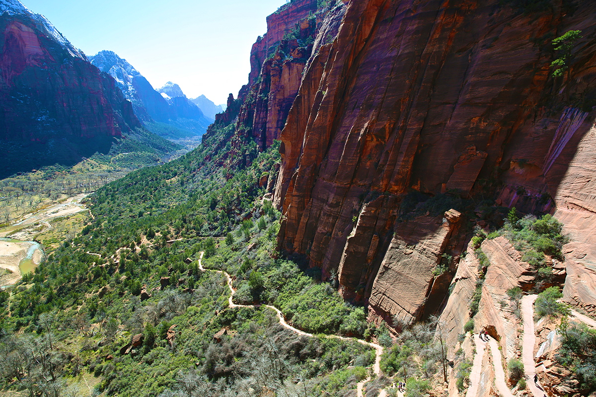 Desert Vacation: Zion National Park