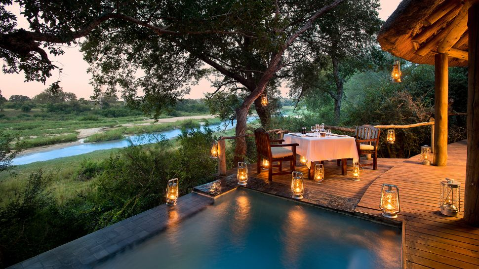 serengeti jungle lodges