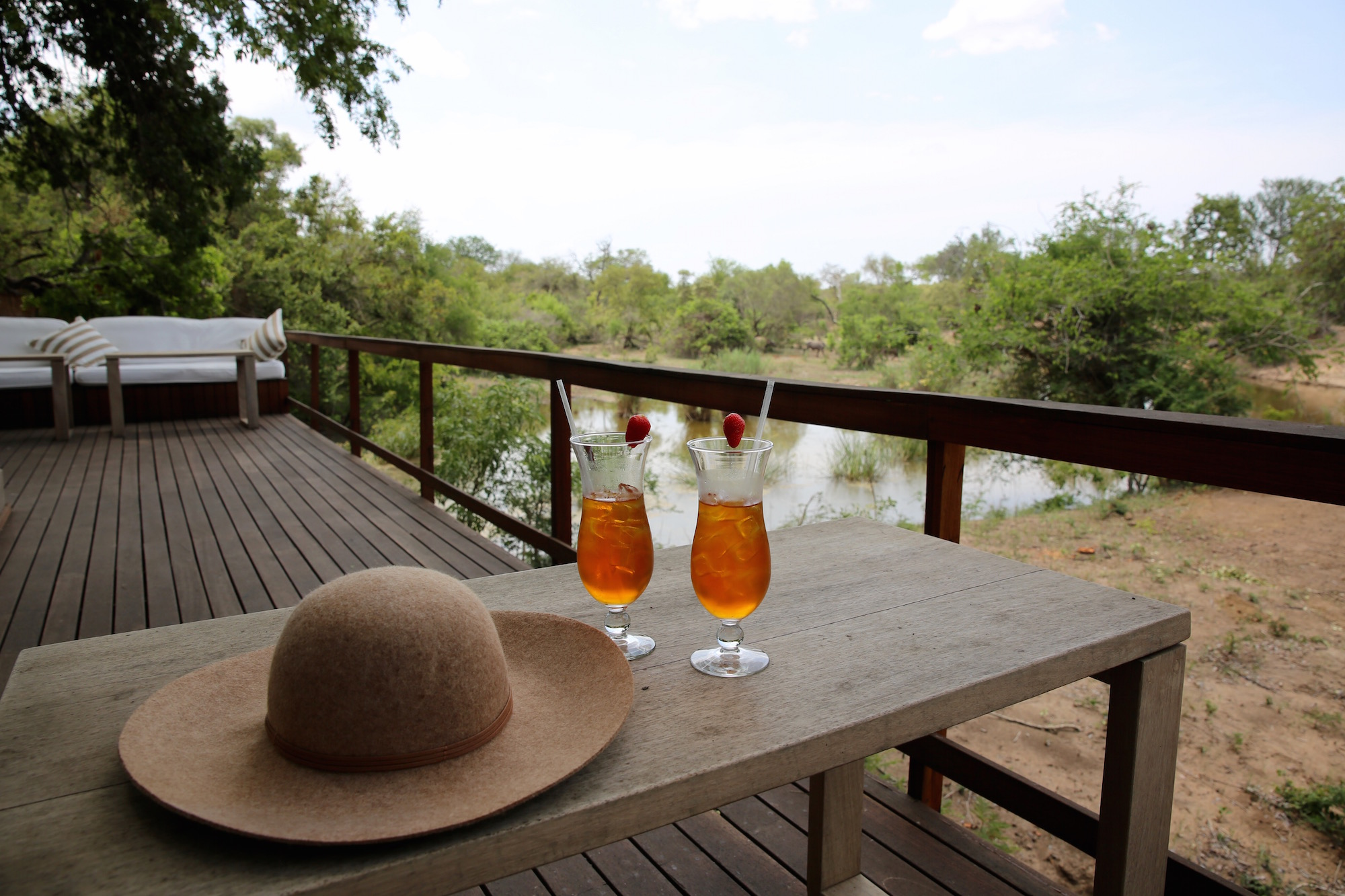 Royal Malewane safari house